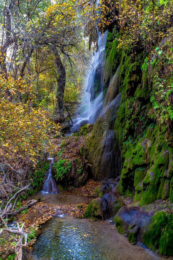 Picturesque Gorman Falls in Texas. Picturesque Moss Covered Gorman Falls with Beautiful Fall Foliage in the Texas Hill Country royalty free stock image