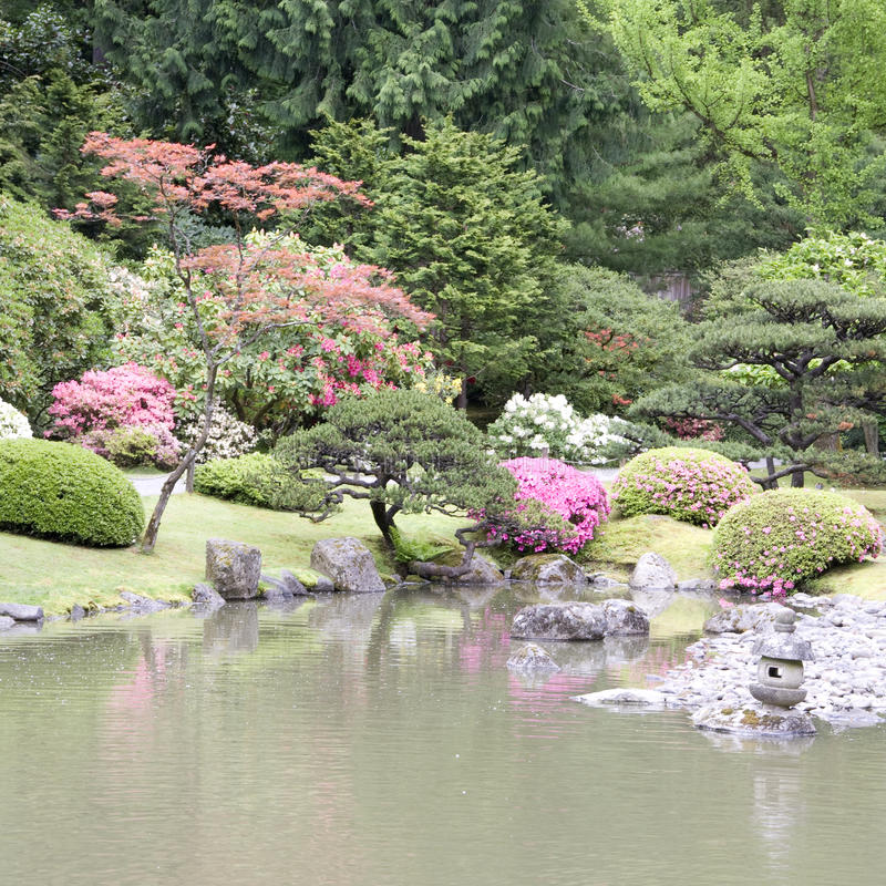 Picturesque Japanese Garden royalty free stock photos