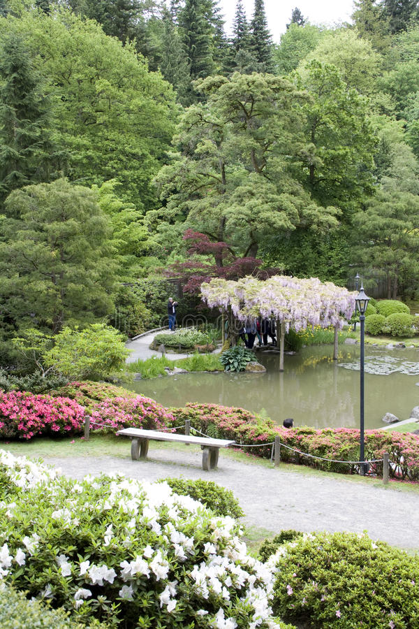Picturesque Japanese Garden Editorial Stock Photo