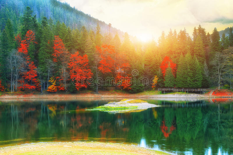 Picturesque lake in the autumn forest royalty free stock photography