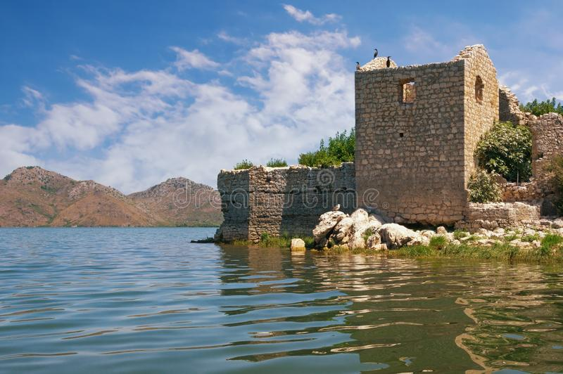 Picturesque lake with ruined fort on small island. View of National Park Lake Skadar. Montenegro. Picturesque lake with a ruined fort on a small island. View of stock photography
