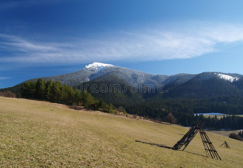 Picturesque landscape. Scenic vie of field on hillside with forest and snow capped mountain in background stock image