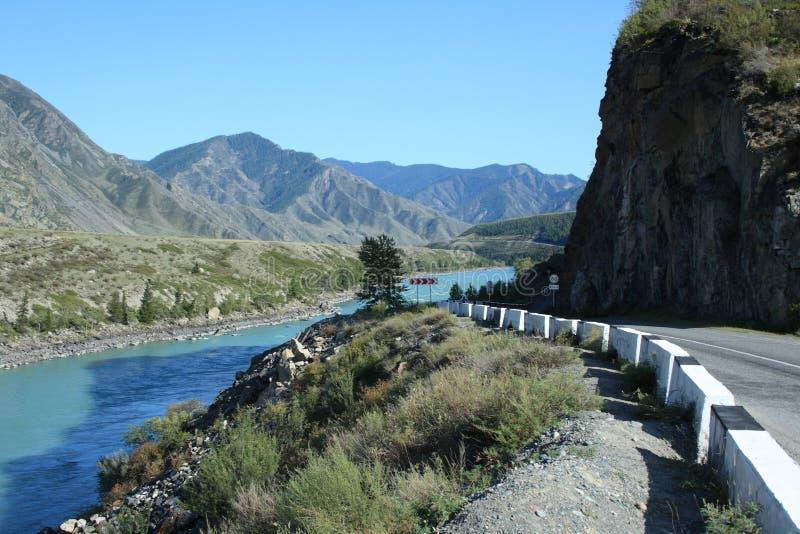 Picturesque mountain road along the beautiful turquoise mountain river Katun. stock image