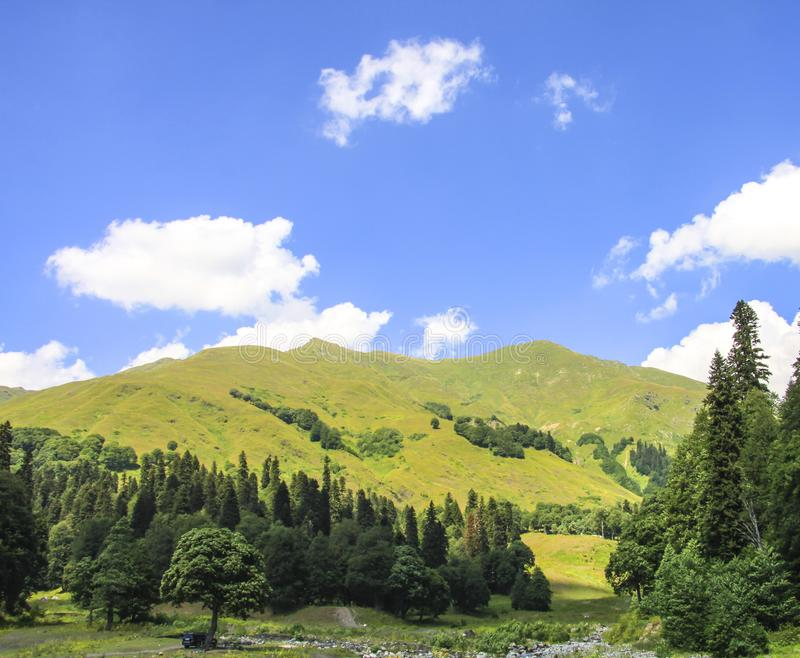Picturesque natural sunny landscape of green alpine meadows stock images