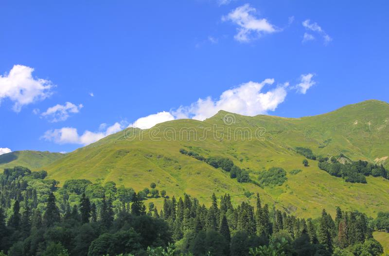 Picturesque natural sunny landscape of green alpine meadows royalty free stock images