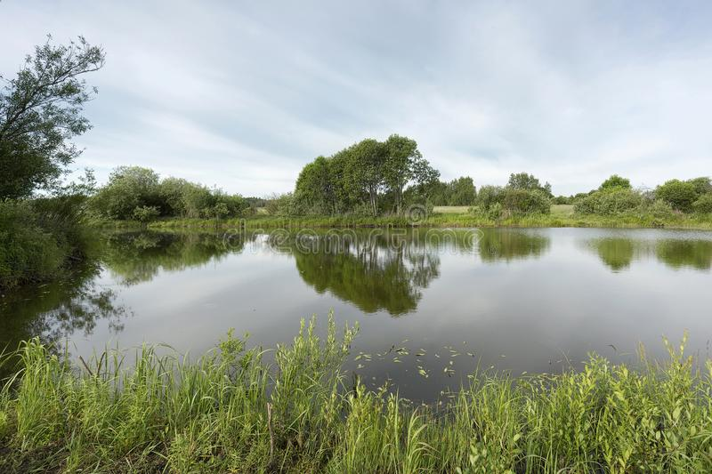 A picturesque pond with overgrown green banks and clouds in the blue sky. stock photography