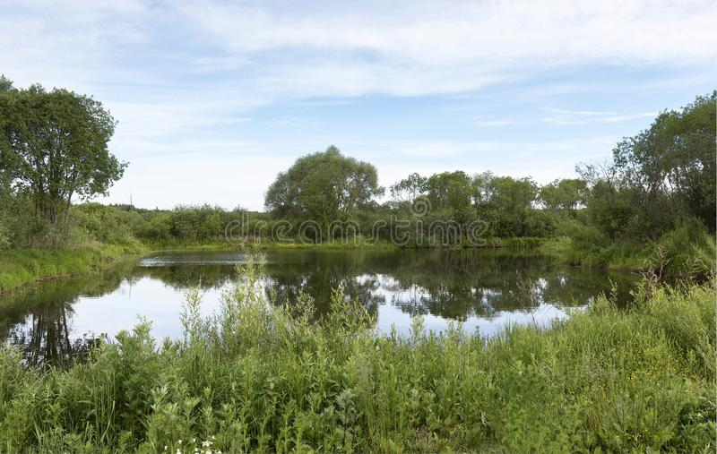 A picturesque pond with overgrown green banks and clouds in the blue sky. stock photo