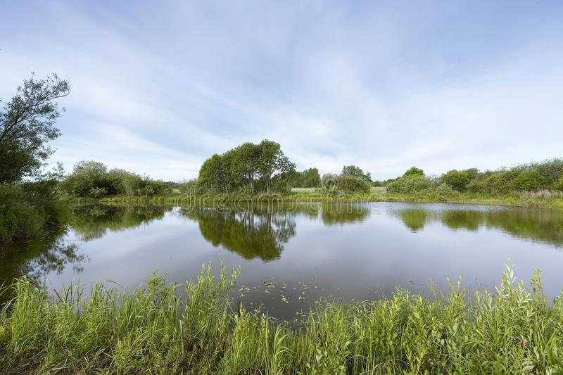 A picturesque pond with overgrown green banks and clouds in the blue sky. royalty free stock photos