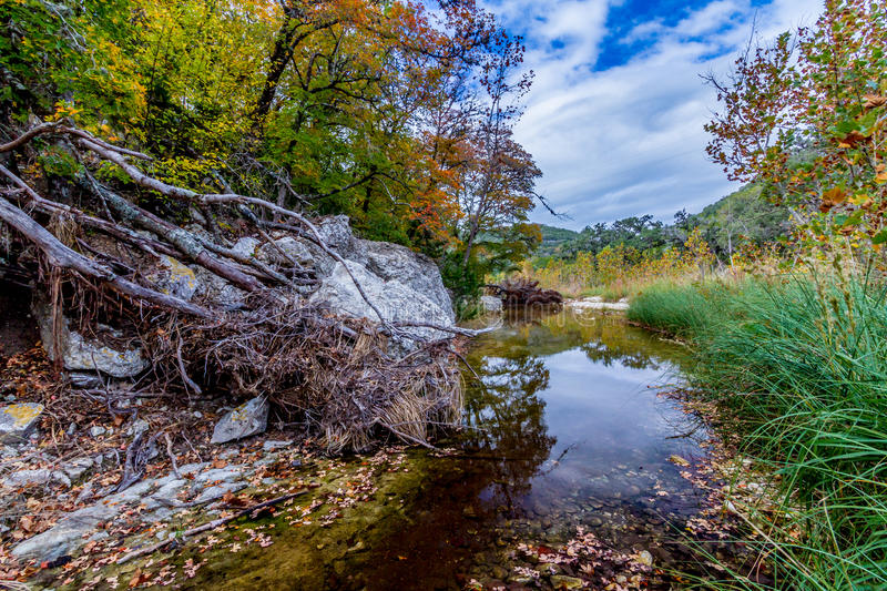 Clear Waters in a White Granite Stream Bed. A Picturesque Scene with Beautiful Fall Foliage on a Tranquil Clear Stream at Lost Maples State Park in Texas. Texas stock photos