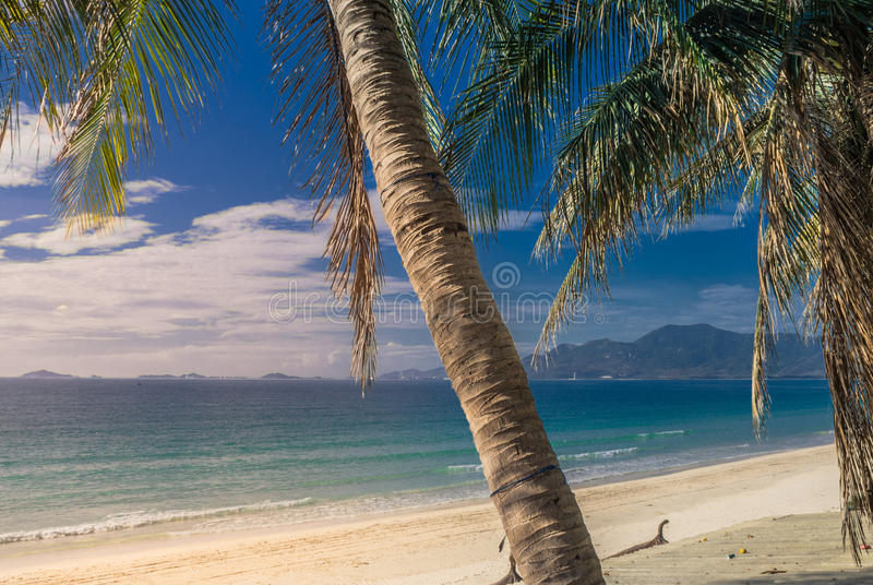 Picturesque shore of the South China Sea stock photo