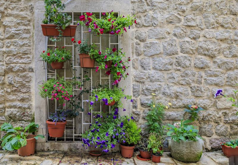 Picturesque stone wall in the streets of a preserved medieval Old town with colorful potted flowers in Budva, Montenegro. Picturesque stone wall in the streets royalty free stock photos