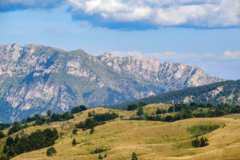 Summer mountain Durmitor National Park, Montenegro. Durmitor panoramic road royalty free stock photography