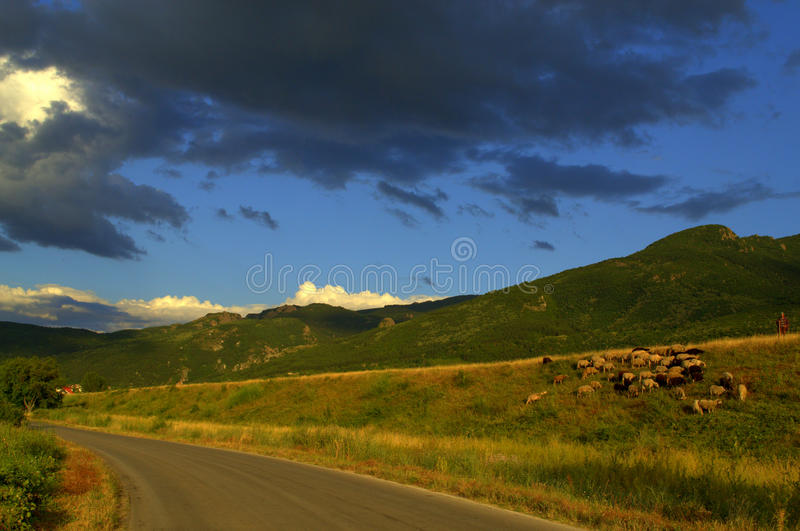 Picturesque summer rustic landscape stock photography