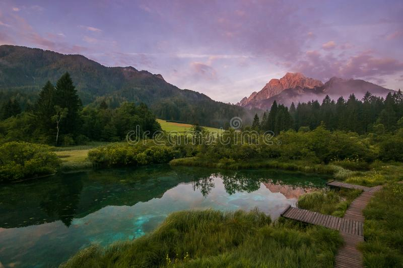 Picturesque summer scene of Julian Alps with Kranjska gora peak on background. Wonderful sunrise view of Zelenci natural reserve. Slovenia, Europe. Beauty of royalty free stock image