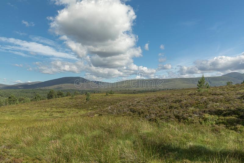 Picturesque sunny view in Scottish Highlands, Cairngorms National Park near Lecht Ski Resort, Scotland, United Kingdom, Europe stock photo