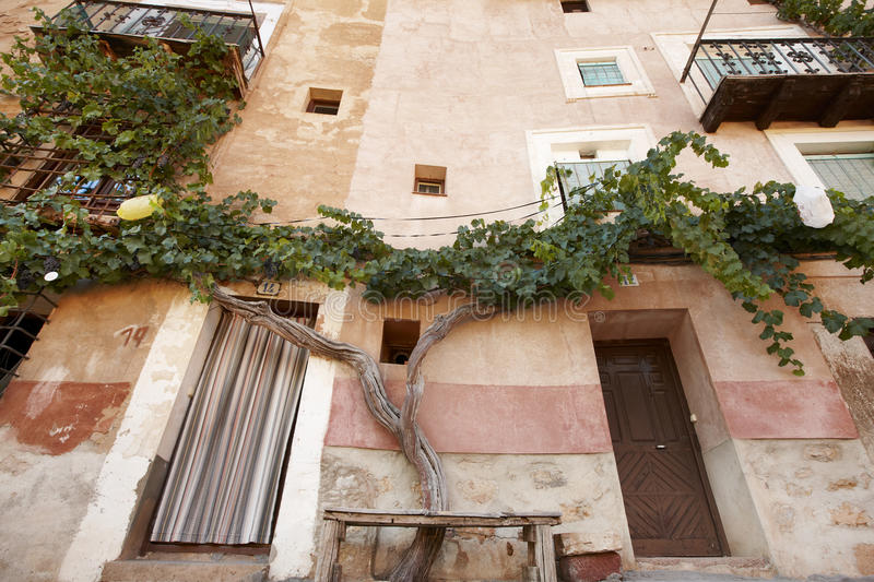 Picturesque tree and ancient facade in Albarracin. Spain stock photography