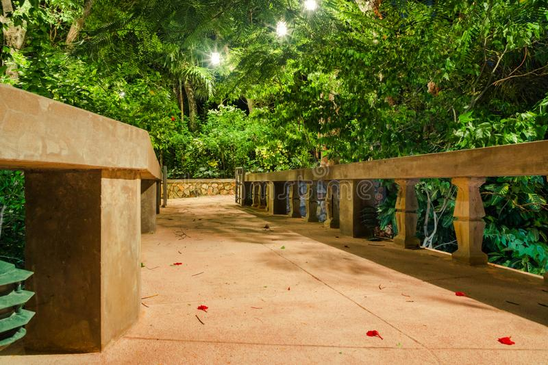 Picturesque tropical garden patio walkway at night in the forest royalty free stock images