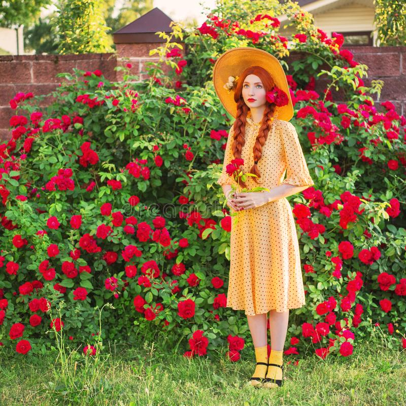 Picturesque Valentines day background. Braided girl in stylish polka dodts yellow dress on beautiful summer roses garden. Redhead comely model with plait on stock image