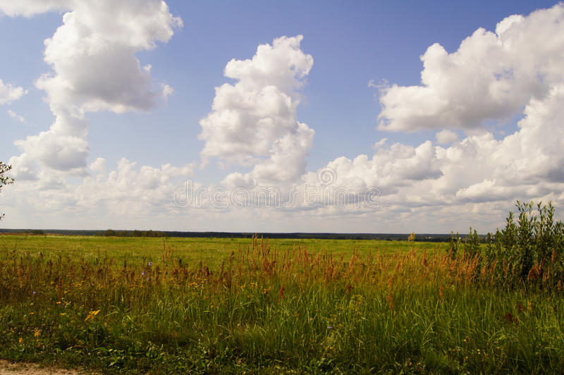 Picturesque view of the beautiful green grass field under the blue cloudy sky and sunshine. Moscow suburbs, Russia. Beautiful wide angle view of the green grass royalty free stock photos