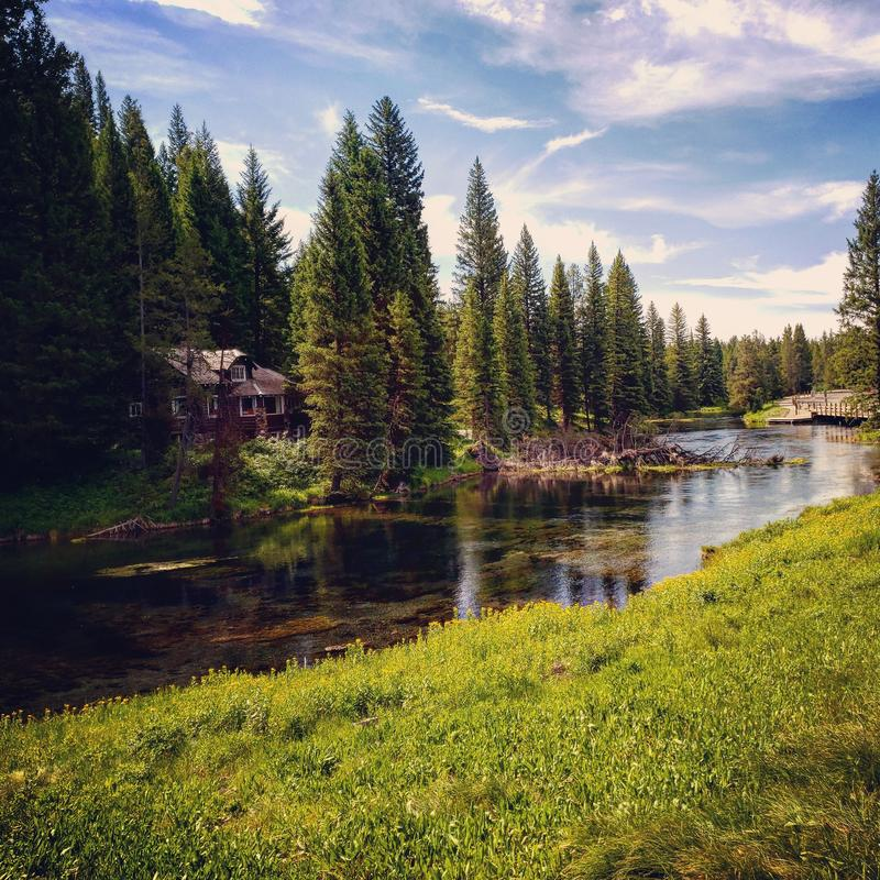 Picturesque view of Big Springs in Island Park Idaho. Water, trees, yellowstone, clear, puzzle, kinkade, painting, comes, life stock photo