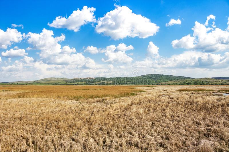 Picturesque view to Dragoman natural karst Marsh - the biggest natural karst wetland in Bulgaria royalty free stock photo