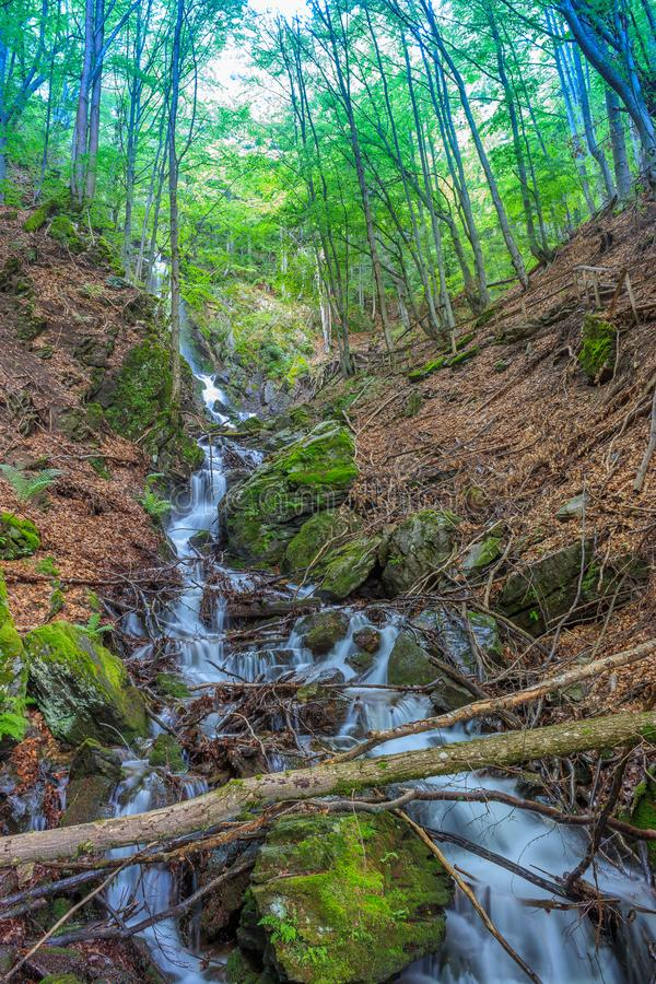 Picturesque  view of waterfall and green forest royalty free stock photos