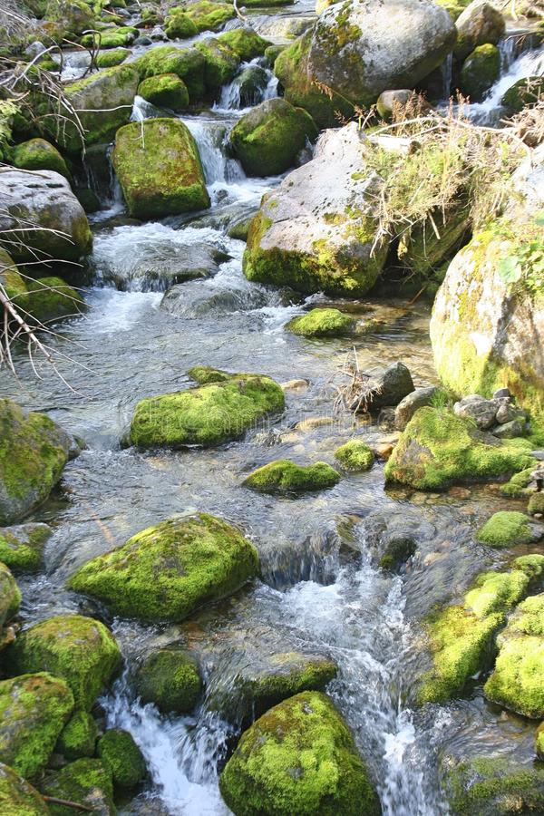 Picturesque waterfall and rocks covered with green moss. Tatra Mountains,. Poland landscape royalty free stock images