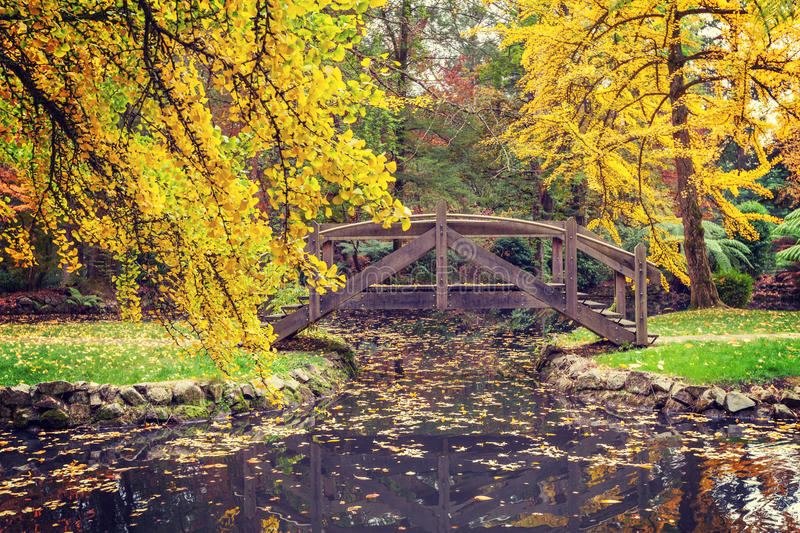Picturesque wooden footbridge over a pond in Autumn. Melbourne, Victoria royalty free stock photography
