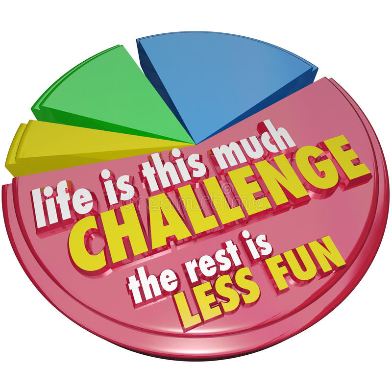 Pie Chart Life This Much Challenge Rest Less Fun vector illustration