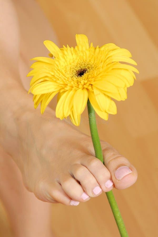 Pie con la flor foto de archivo libre de regalías