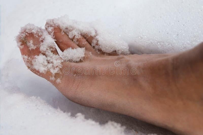 Pie desnudo en la nieve foto de archivo