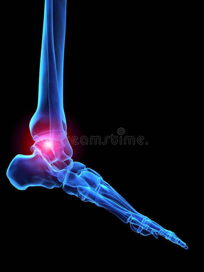Pie humano de la radiografía libre illustration