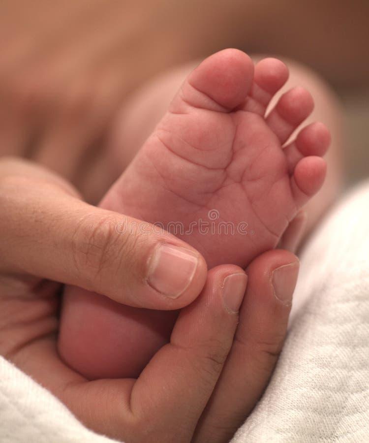 Pie recién nacido minúsculo del bebé en manos femeninas foto de archivo libre de regalías