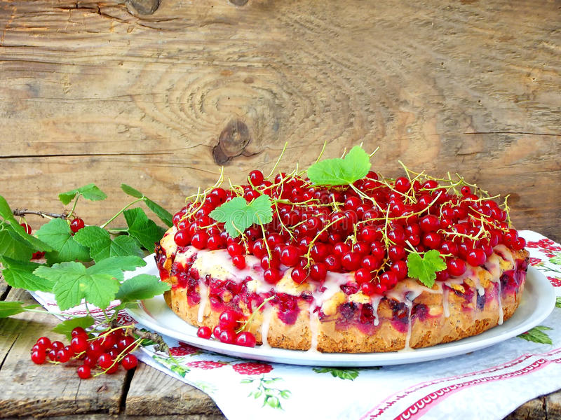 Pie or sponge cake with red currants and poppy seeds royalty free stock image