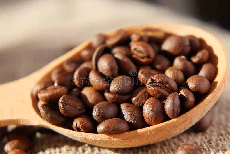 Piec adra naturalna fragrant kawa obraz stock