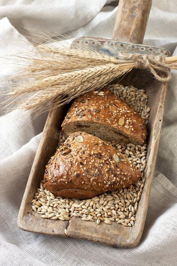 Download Piec Chlebowy świeżo Tradycyjny Obraz Stock - Obraz złożonej z chleb, żniwo: 53775929