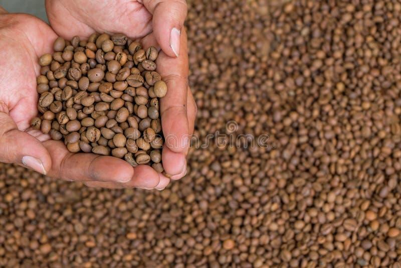 Piec fasolki szparagowej kawa zdjęcie stock