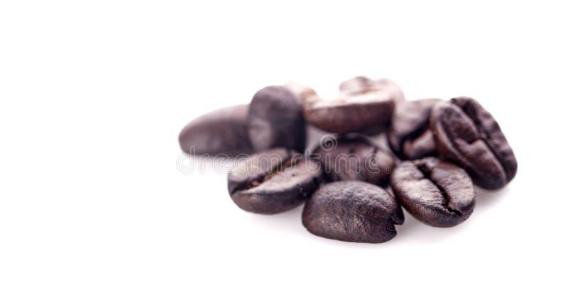 Piec kawowe fasole odizolowywać w białym tle obrazy stock
