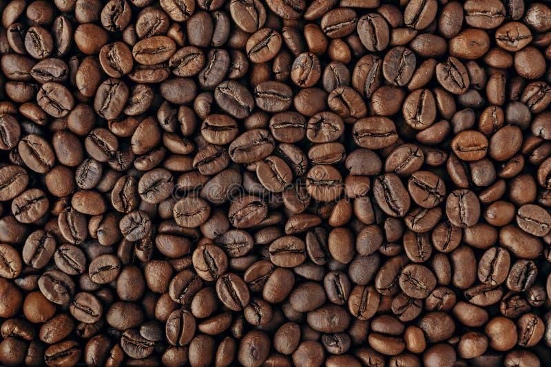 Piec kawowe fasole, zbliżenie tekstura obraz royalty free