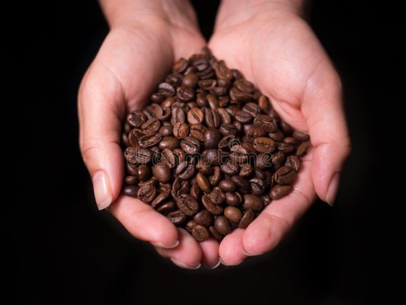 Piec Kawowych fasoli zasięrzutny widok trzymający kobietą w cupped rękach obrazy stock