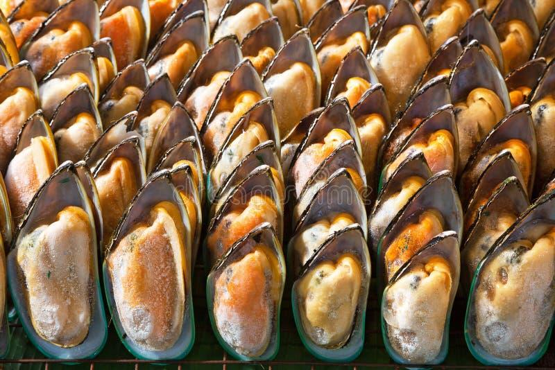 Piec mussels z solą w otwartych skorupach fotografia royalty free