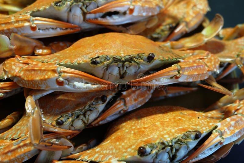 Piec na grillu kraby obrazy royalty free