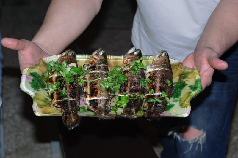 Piec na grillu ryba na tacy fotografia royalty free