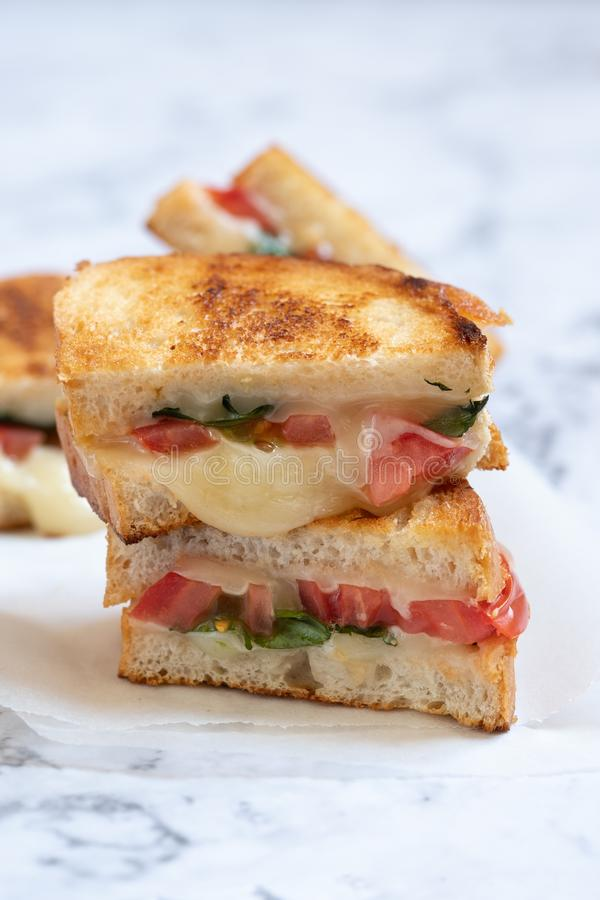 Piec na grillu serowy caprese panini z pomidorem, mozzarellą i basilem, fotografia royalty free