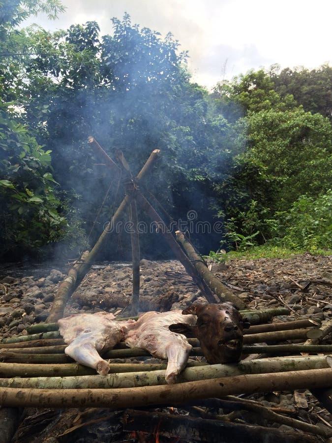Piec na grillu w dzikim obrazy stock