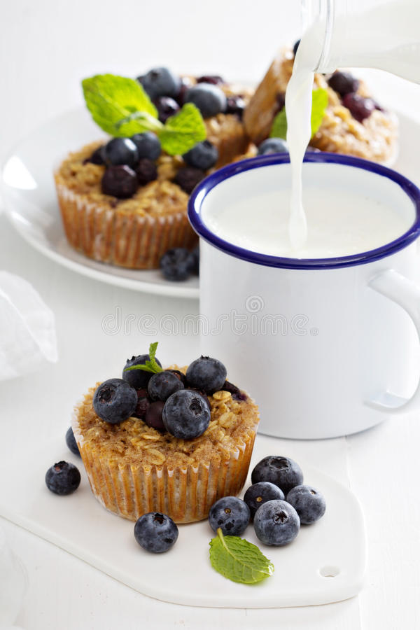 Piec oatmeal muffins z czarną jagodą obrazy royalty free