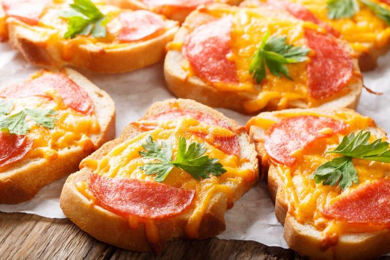 Piec otwarta grzanki pizza z salami kie?bas? i topi?cym serowym cheddarem w g?r? horyzontalny obrazy royalty free