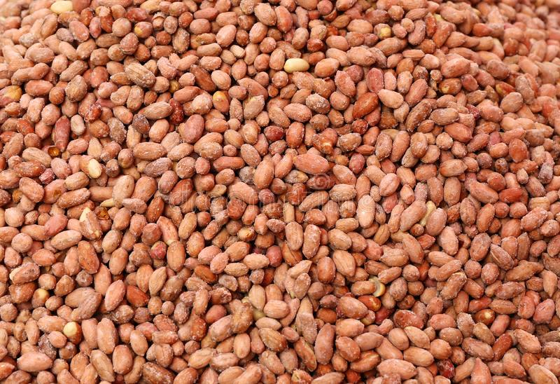 Piec Słoni arachidy na sprzedaży obrazy stock