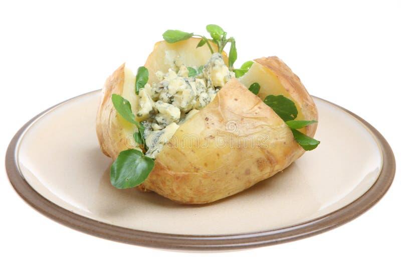 piec serowy kartoflany stilton obraz stock