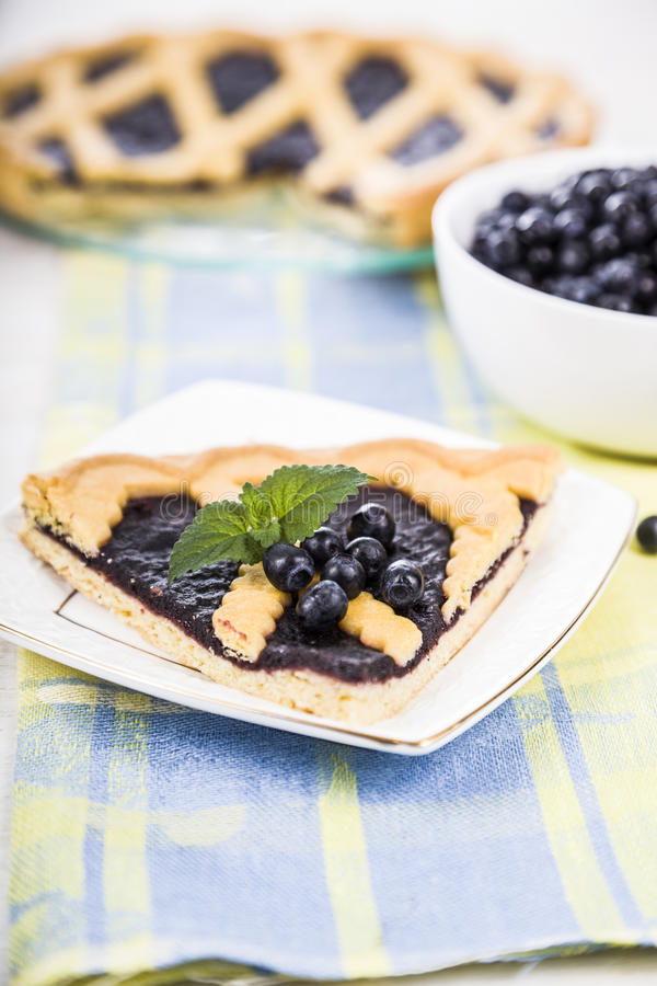 Piece of a blueberry pie and fresh berries stock image